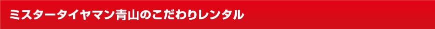 stadless_title_01_kodawari